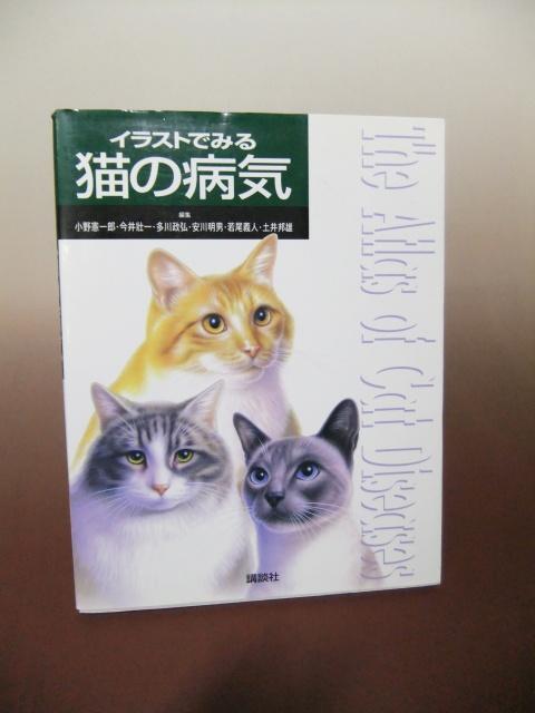 猫の病気 獣医