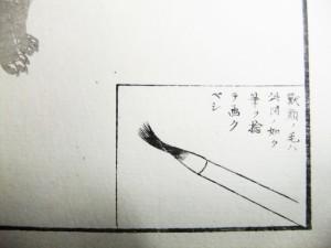 「獣類ノ毛ハ此図の如く筆を捻テ画クベシ」