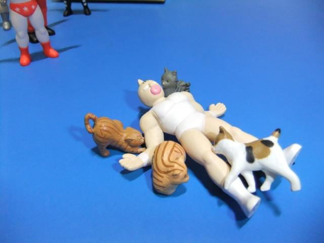キン肉マンと猫